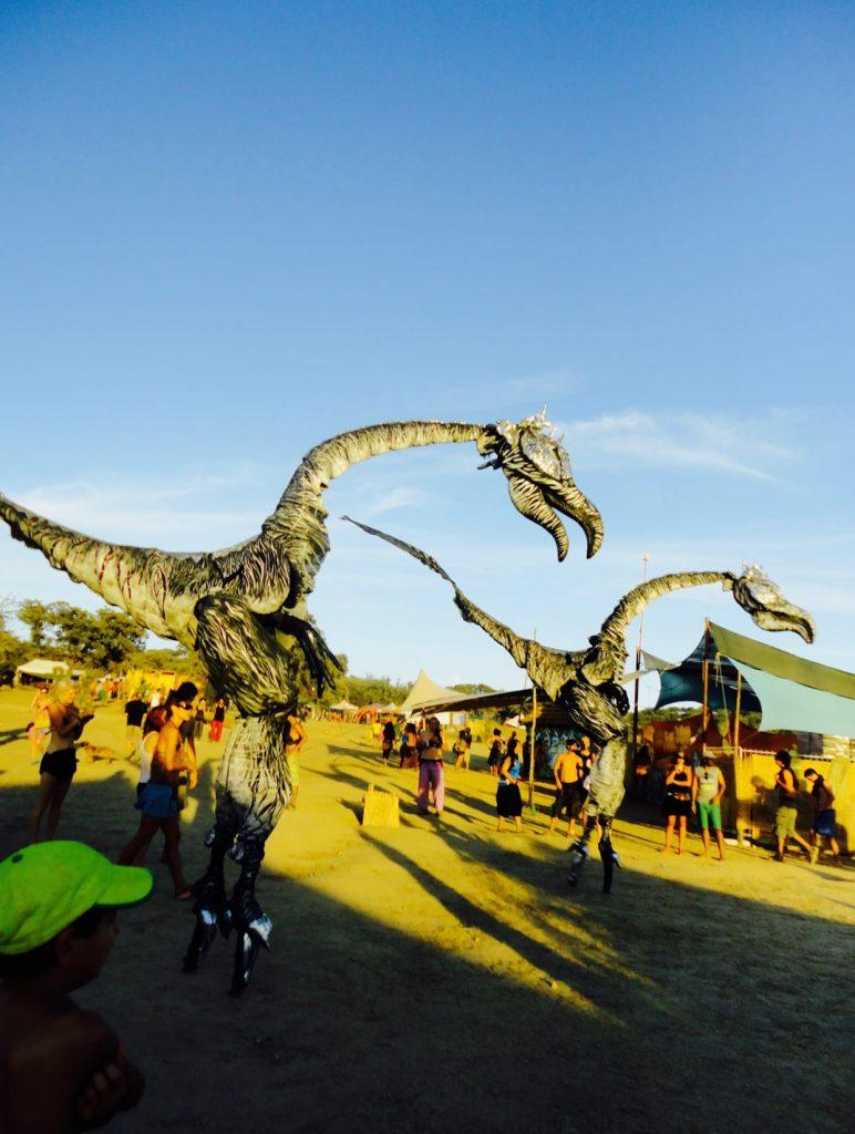 The Boom Festival 2010 ( Portugal )